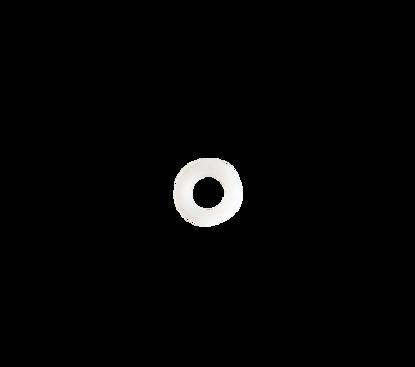 Picture of Nylon ring voor schotkoppeling art. 1512163