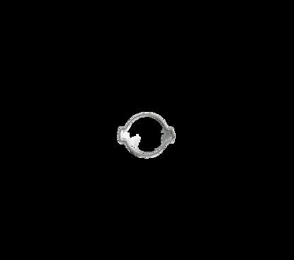 Afbeeldingen van 2- oorklem 13-15mm verzinkt